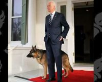 Joe Biden's dog story turns out to be a fish tale