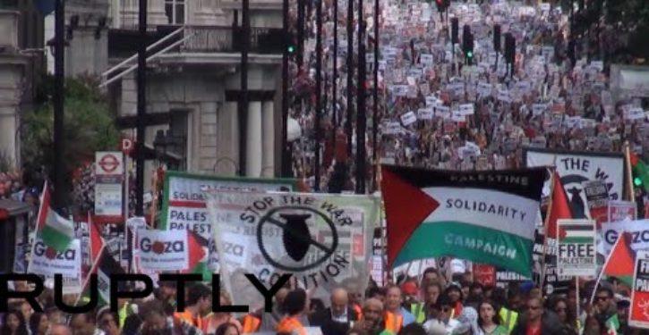 'Free Palestine' demonstrators block traffic in Los Angeles: 'Long live intifada'