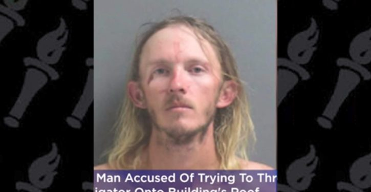 Florida man arrested while trying to 'teach' alligator 'a lesson'