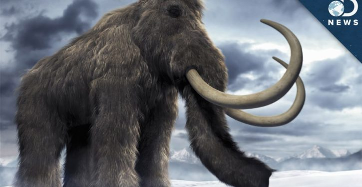 New company says it's bringing back woolly mammoth, as way to fight climate change